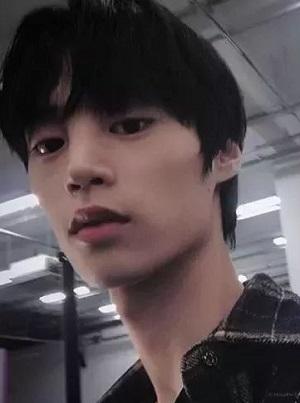 男生刘海蓬松发型