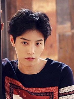 男生韩式烫发发型图片